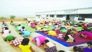 सात दिवसीय योग प्रदर्शन व प्रशिक्षण शिविर का हुआ समापन