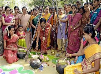 दक्षिण भारतीय युवाओं ने मनाया पोंगल