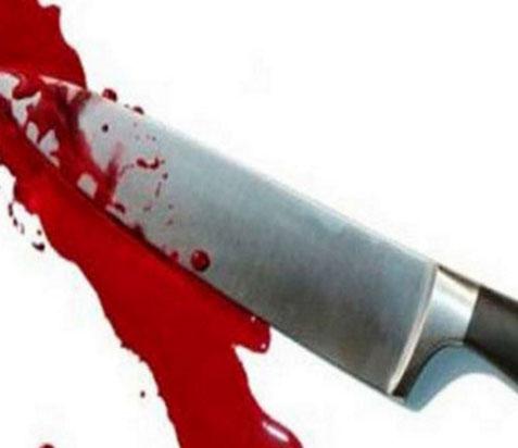घरेलू विवाद पति ने पत्नी की हत्या की